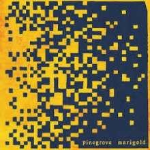 Pinegrove: Marigold (Limited Edition) (Yellow Vinyl), LP