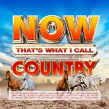 Now That's What I Call Country, 4 CDs