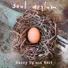 Soul Asylum: Hurry Up And Wait, CD