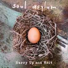 Soul Asylum: Hurry Up And Wait, 2 LPs