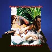 Fiona Fiasco & Melodiesinfonie: Forever Faking Memoirs, LP