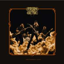 Imperial State Electric: Anywhere Loud, 2 LPs