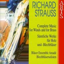 Richard Strauss (1864-1949): Sämtliche Werke für Bläser Vol.2, CD