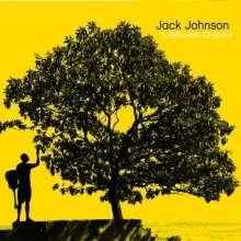 Jack Johnson: In Between Dreams (Ecopac), CD