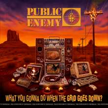Public Enemy: What You Gonna Do When The Grid Goes Down?, CD