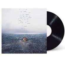 Shawn Mendes: Wonder, LP