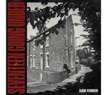 Sam Fender: Seventeen Going Under, CD