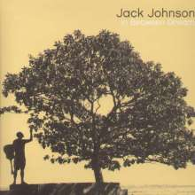 Jack Johnson: In Between Dreams (180g), LP