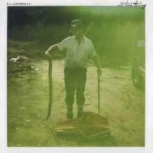 S. G. Goodman: Old Time Feeling, CD