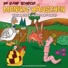 Kati Naumann: Die kleine Schnecke Monika Häuschen 23: Warum haben Hasen lange Ohren?, CD
