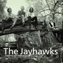 The Jayhawks: Tomorrow The Green Grass, CD