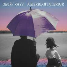 Gruff Rhys (Super Furry Animals): American Interior (LP + CD), 2 LPs