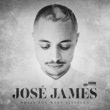 José James: While You Were Sleeping, 2 LPs