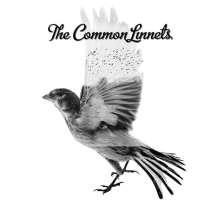 The Common Linnets (Ilse DeLange & Waylon): The Common Linnets, CD