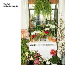 Emile Haynie: We Fall, CD