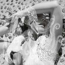 Björk: Vespertine (180g), 2 LPs