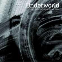 Underworld: Barbara Barbara, We Face A Shining Future (180g), LP