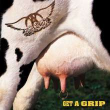 Aerosmith: Get A Grip (180g), 2 LPs