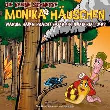 Die kleine Schnecke Monika Häuschen 48: Warum haben Prachtkäfer einen Feuermelder?, CD