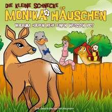 Die kleine Schnecke Monika Häuschen 50: Warum haben Rehe einen weißen Po?, CD