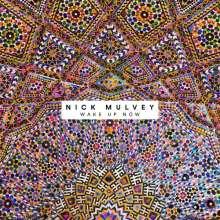 Nick Mulvey: Wake Up Now, CD