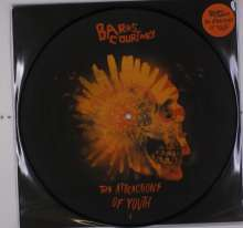 Barns Courtney: The Attractions Of Youth (Picture Disc), LP