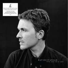 David Sylvian: Dead Bees On A Cake (180g) (Expanded-Edition), 2 LPs