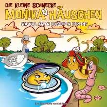 Die kleine Schnecke Monika Häuschen 52: Warum haben Muscheln Perlen?, CD