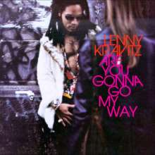 Lenny Kravitz: Are You Gonna Go My Way (180g), 2 LPs