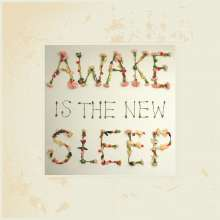 Ben Lee: Awake Is The New Sleep (10th Anniversary Edition) (180g) (Limited Edition), 2 LPs
