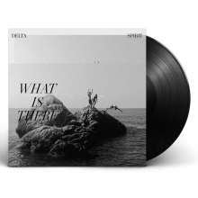 Delta Spirit: What Is There, LP
