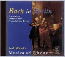 Jed Wentz - Bach in Berlin, CD