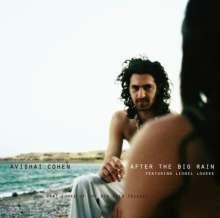 Avishai Cohen (Trumpet) (geb. 1978): After The Big Rain (Digipack), CD