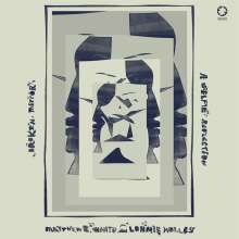 Matthew E. White & Lonnie Holley: Broken Mirror: A Selfie Reflection, CD