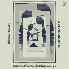 Matthew E. White & Lonnie Holley: Broken Mirror: A Selfie Reflection, LP