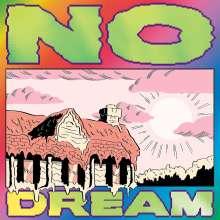 Jeff Rosenstock: No Dream, LP