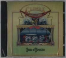 Climax Blues Band (ex-Climax Chicago Blues Band): Sense Of Direction, CD