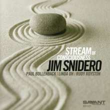Jim Snidero (geb. 1958): Stream Of Consciousness, CD