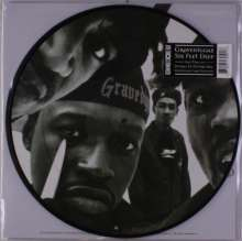 Gravediggaz: Six Feet Deep (Picture Disc), 2 LPs