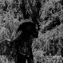 Moor Mother: Analog Fluids Of Sonic Black Holes, LP