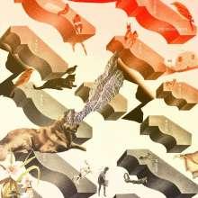 I'm Kingfisher: Transit, CD