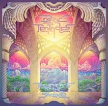 Ozric Tentacles: Technicians Of The Sacred (180g), 2 LPs