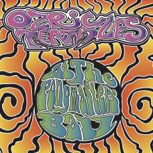 Ozric Tentacles: At The Pongmasters Ball (180g), 2 LPs