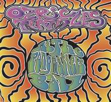Ozric Tentacles: At The Pongmasters Ball, 2 CDs