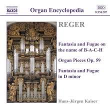 Max Reger (1873-1916): Sämtliche Orgelwerke Vol.3, CD