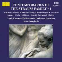 Contemporaries Of The Strauss Family Vol.1, CD