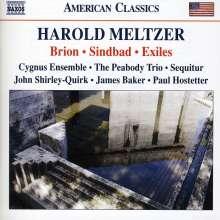 Harold Meltzer (geb. 1966): Brion, CD