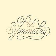 Pet Symmetry: Vision (180g) (Cream Vinyl), LP