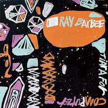 Ray Barbee: Tiara For Computer, LP