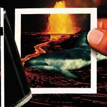 The Thermals: We Disappear, LP